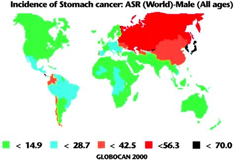 Helicobacter Pylori Infection and Gastric Cancer | Cancer