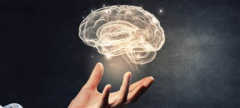 Neuroscience and Motivation: What You Need to Know   ITA Group